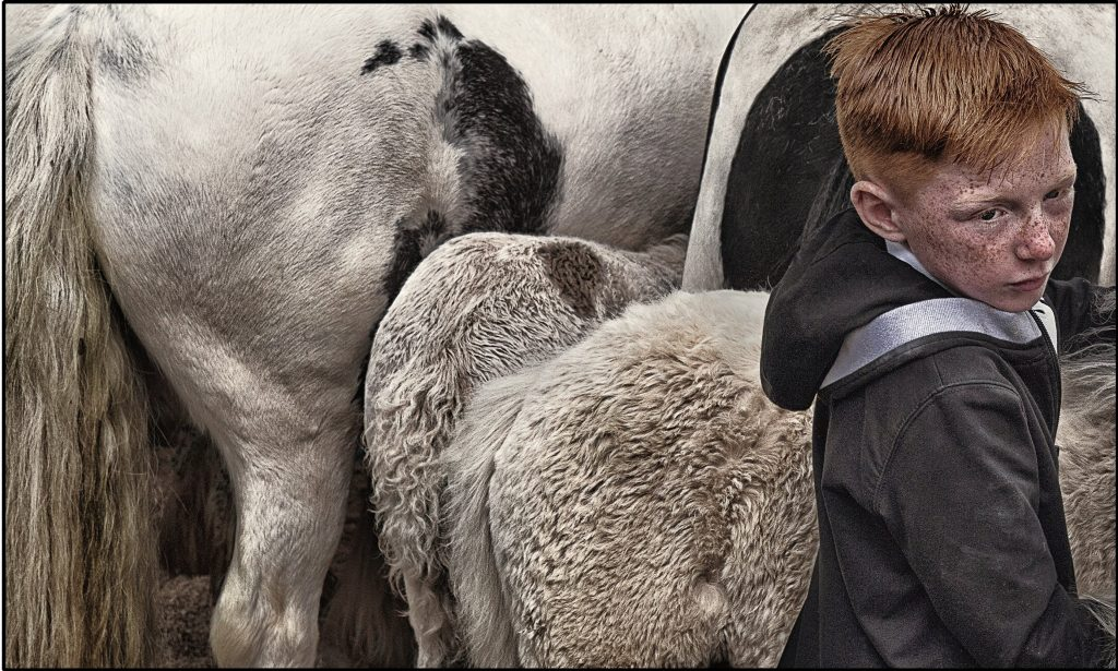 A boy with ginger hair stood in front of two farmyard animals.